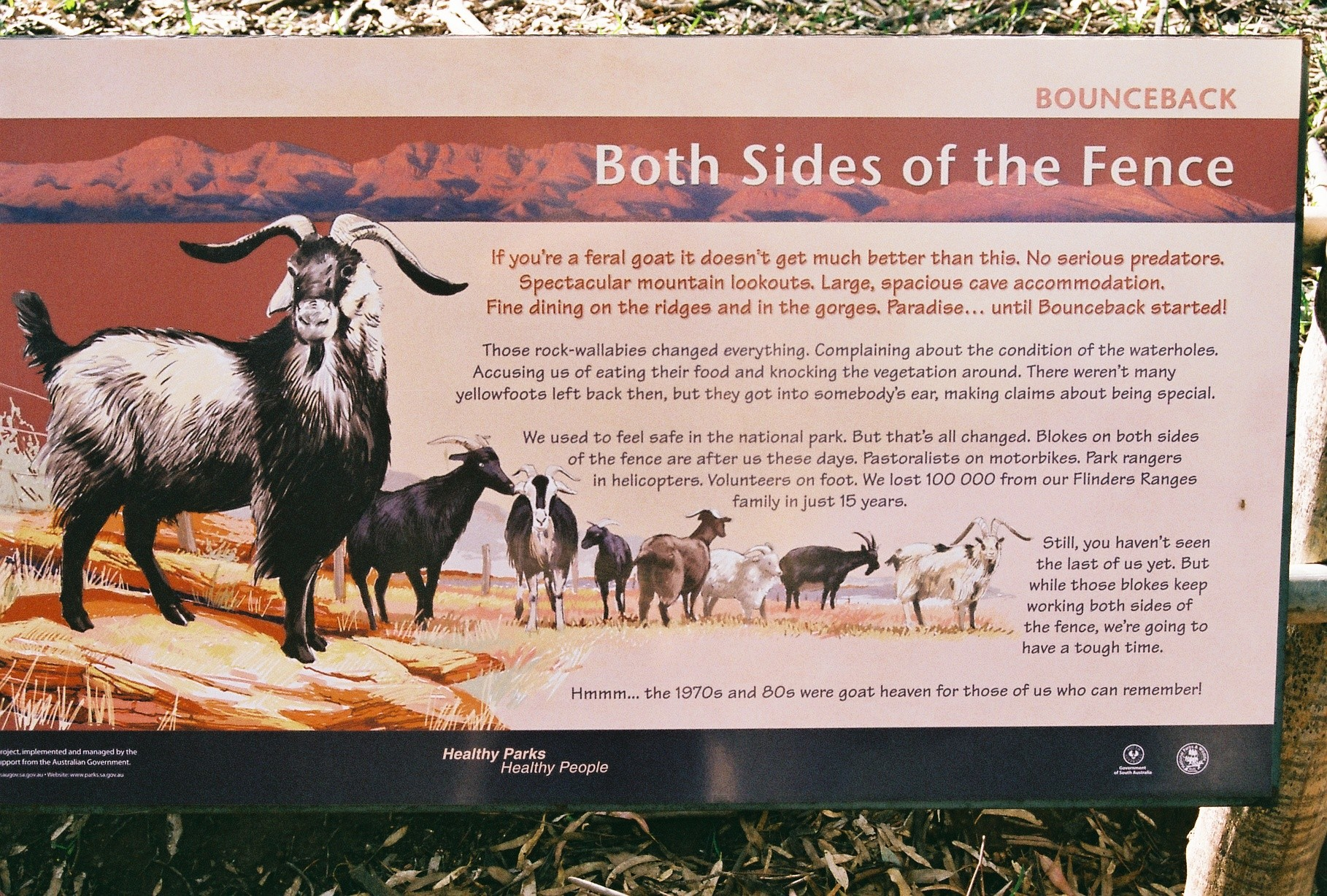 Educational material about Feral Goats
