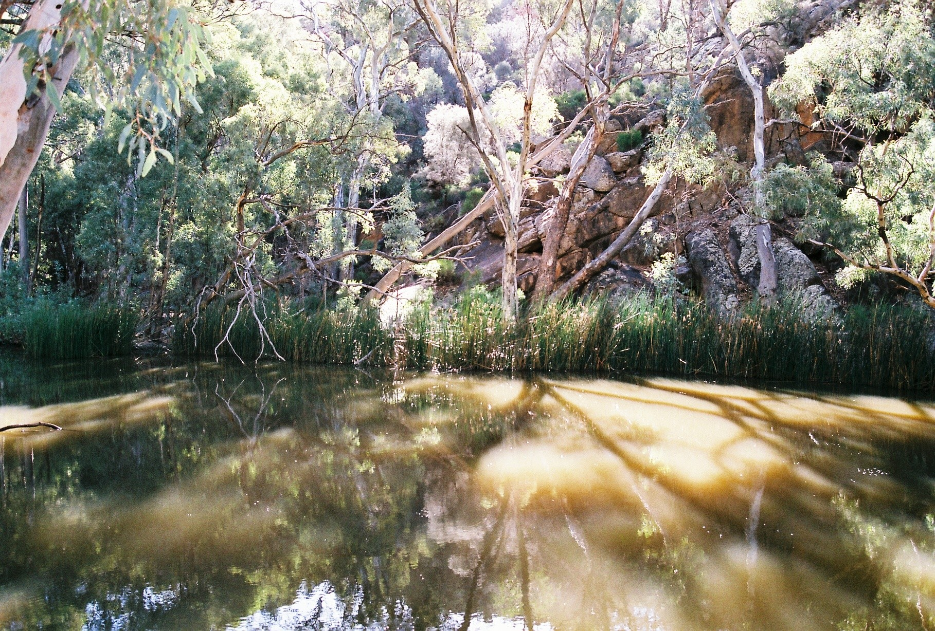Flinders Ranges Waterhole